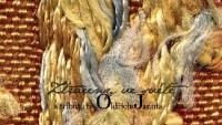 various-artists-a-oldrich-janota_-_ztraceny-ve-svete-a-tribute-to-oldrich-janota