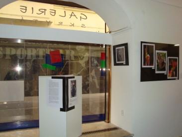 Galerie Skrytá