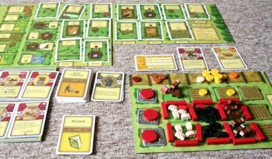 Agricola - ukončená hra, Foto: Dušan Takáč, Topzine.cz