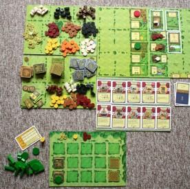 Agricola - rozehraná hra, Foto: Dušan Takáč, Topzine.cz