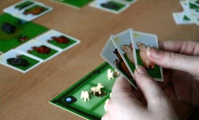Černá ovce - karty v ruce, Foto: Dušan Takáč