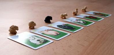 Černá ovce - zvířátka, Foto: Dušan Takáč