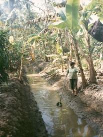 Thajsko - deštný prales, Foto: Michaela Dočkalová, Topzine.cz