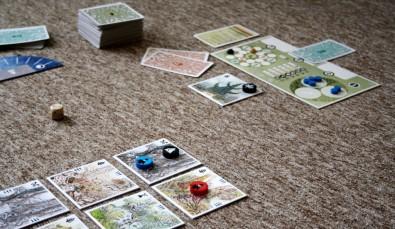 Insula - rozehraná hra, Foto: Hana Vítová, Topzine.cz