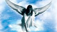 Keks - Jak děkuje se andělům
