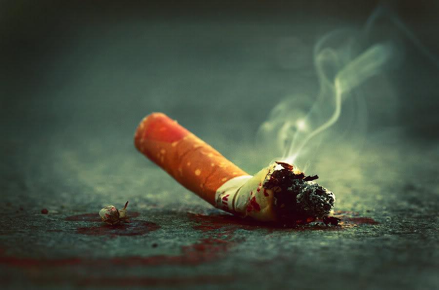 Výsledek obrázku pro nedopalek cigarety