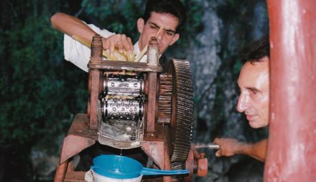 FOTO: lisování ckrové třtiny