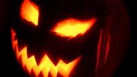 FOTO: Halloween - dýně