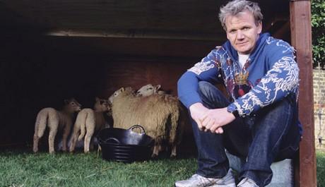 FOTO: Jednou z vášní Gordona Ramseyho je farma.