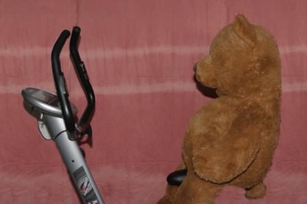 FOTO: medvěd na rotopedu