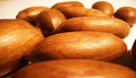 FOTO: Pekanové ořechy