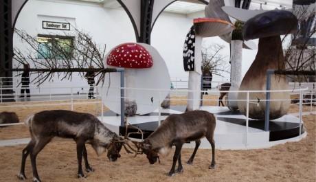 FOTO: Exhibice SOMA v berlínském muzeu