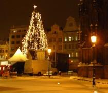 FOTO: Vánoční strom