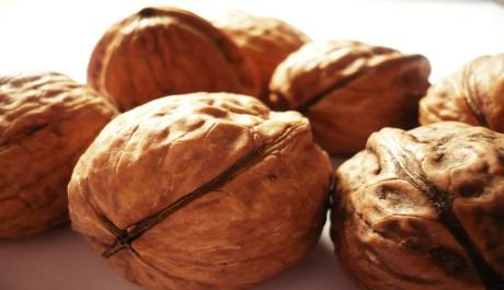 FOTO: Vlašské ořechy