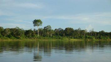 FOTO: Řeka Amazonka