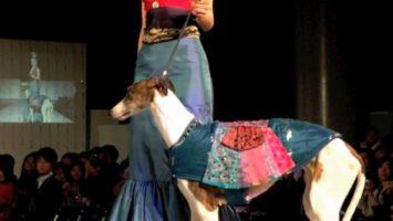 FOTO: Psí módní přehlídka