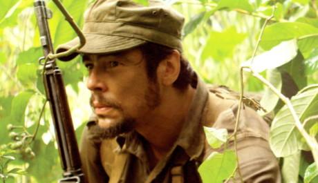 FOTO: Benicio Del Toro