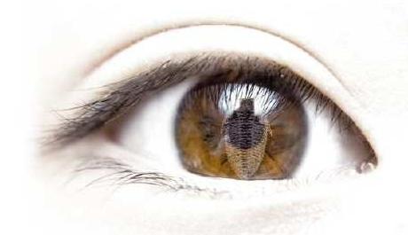 OBR: Z pohledu trilobita