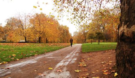 FOTO: Podzim života