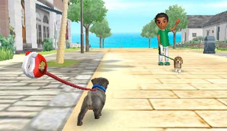 OBR.: Se psem na procházce