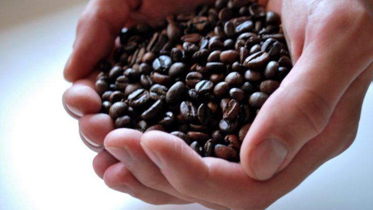 FOTO: Kávová zrna