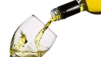 TEXT: Odrůda bílého vína chardonnay