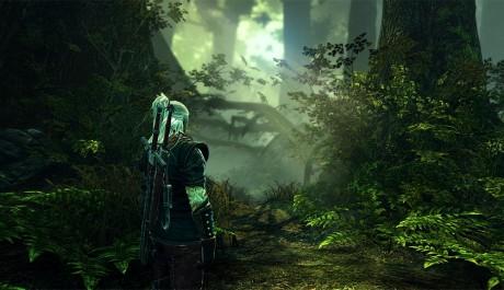The Witcher 2 - žijící svět