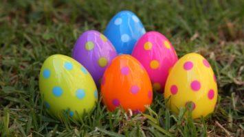 FOTO: Rozmanitost a barevnost vajíček někdy nezná mezí