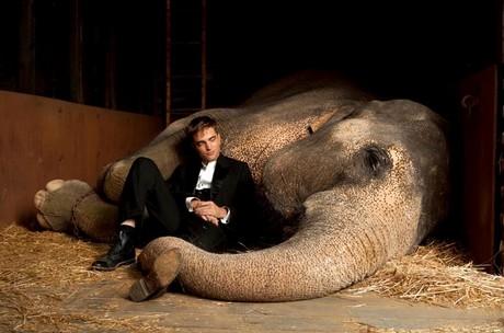 FOTO: Water For Elephants - R. Pattinson