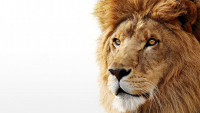 OBR: Mac OS X Lion