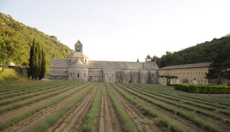 FOTO: Provence - Abbey
