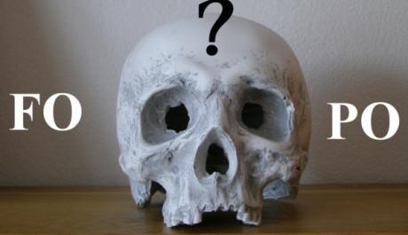 FOTO: Lebka přemýšlející nad zkratkami FO a PO