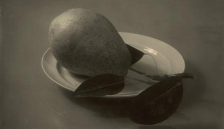 FOTO: Zátiší podle Navrátila (1958)