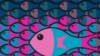 OBR: Velka ryba