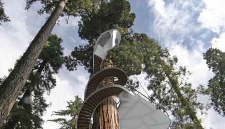 OBR: Návrh na Winding Snake Treehouse od společnosti Baumraum