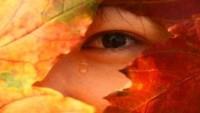 OBR: Podzimní pláč