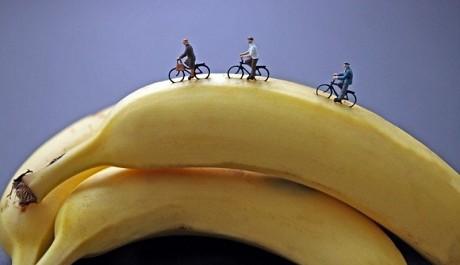FOTO: Cyklisté na banánu, Christopher Boffoli