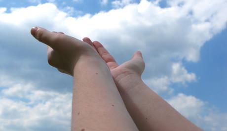 FOTO: Pomocné ruce