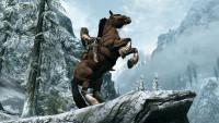 The Elder Scrolls V: Skyrim - kůň
