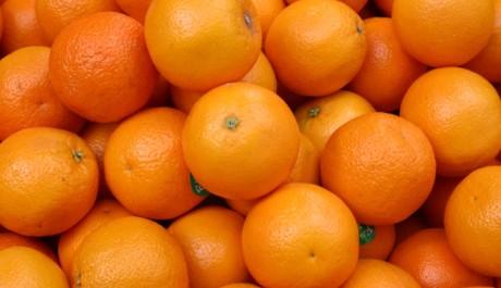 Foto: pomeranče_oranges