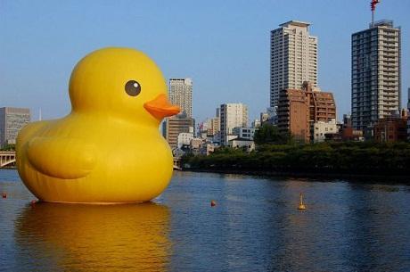 OBR: Florentijn Hoffman Rubber Duck