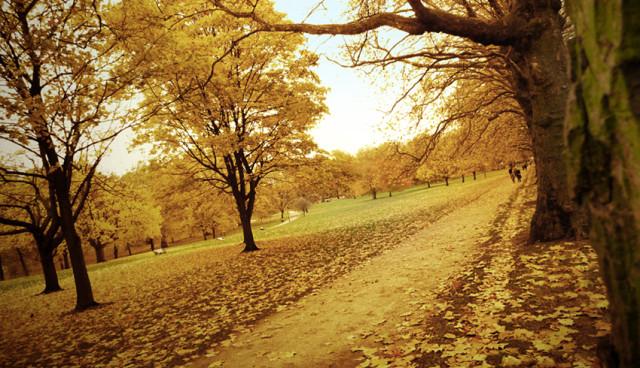 FOTO: Podzim