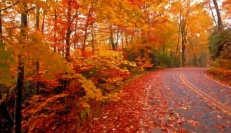 FOTO: Listopad nabízí i hezké dny