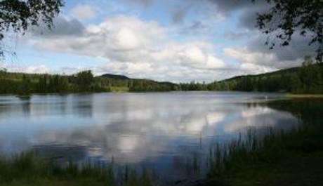 FOTO: Švédsko