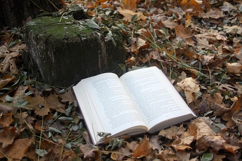 FOTO: Kniha