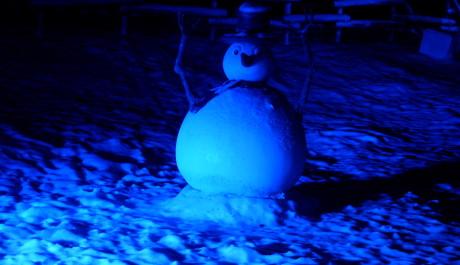 FOTO: Sněhulák v Disneylandu