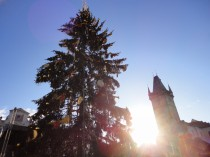 FOTO: Vánoční strom v Praze 2011