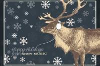 FOTO: Veselé Vánoce od Sony Music