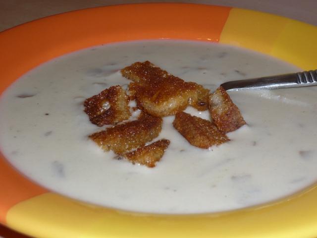 FOTO: Žampionová polévka