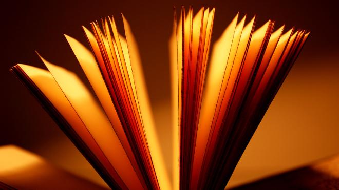 FOTO: Literaturu bylo třeba pozvednout a získat pro ni širší publikum.
